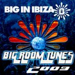 Fonzerelli : Big Room Tunes 2009